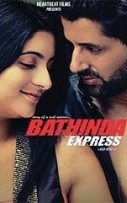 Bathinda Express (2016)