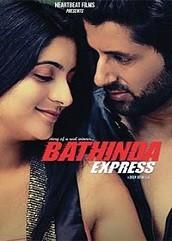 Bathinda Express (2016)