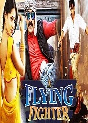 A Flying Fighter Hindi Dubbed