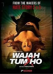 Wajah Tum Ho (2016)
