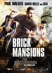 Brick Mansions Hindi Dubbed