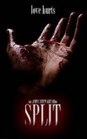 Split Hindi Dubbed
