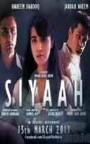 Siyaah (2013)