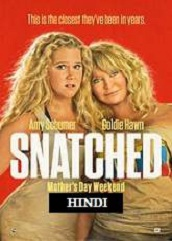 Snatched Hindi Dubbed