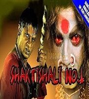 Shaktishali No. 1 Hindi Dubbed