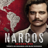 Narcos (2015) Season 1 All Episodes Hindi Dubbed