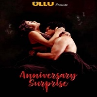 Anniversary Surprise (2019) Hindi Season 1 Complete