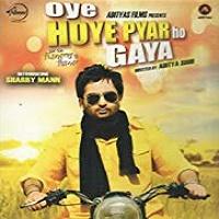 Oye Hoye Pyar Ho Gaya (2013)