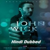 John Wick Hindi Dubbed