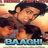 Baaghi: A Rebel for Love (1990)