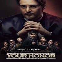 Your Honor (2020) Hindi Season 1