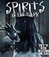 Spirits in the Dark Hindi Dubbed