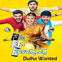 Dulha Wanted Hindi Dubbed