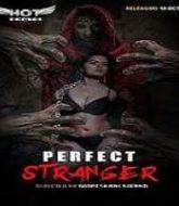 Perfect Stranger (2020)