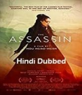 The Assassin 2015 Hindi Dubbed