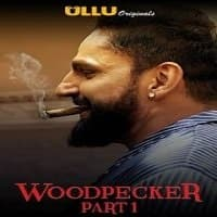 Woodpecker (Part 1) Ullu