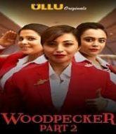 Woodpecker (Part 2) Ullu