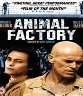 Animal Factory Hindi Dubbed