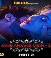 Charmsukh: Jane Anjane Mein 2 (Part 2)