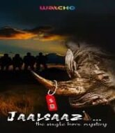 Jaalsaazi (2020) Hindi Season 1