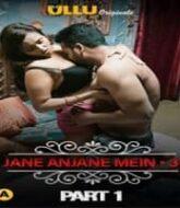 Charmsukh: Jane Anjane Mein 3 (Part 1)