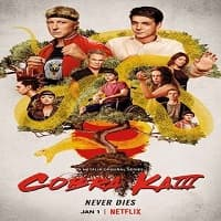 Cobra Kai Season 3 Hindi Dubbed