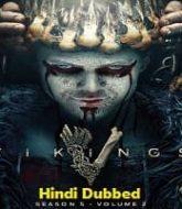 Vikings Season 5 Hindi Dubbed