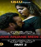 Charmsukh Jane Anjane Mein 3 (Part 2)