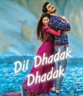 Dil Dhadak Dhadak 2021 Hindi Dubbed