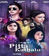 Pitta Kathalu (2021) Hindi Season 1