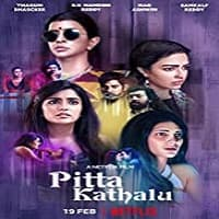 Pitta Kathalu (2021) Hindi Season 1