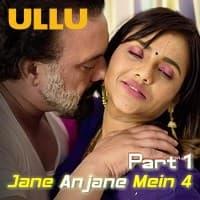 Jane Anjane Mein 4 Part 1 (Charmsukh)
