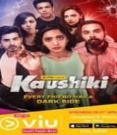 Sumer Singh Case Files aka Kaushiki (2021) Hindi Season 1