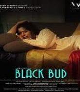 Black Bud (2021)