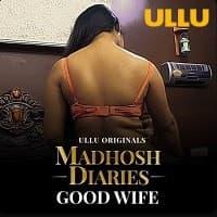 Madhosh Diaries (Good Wife)
